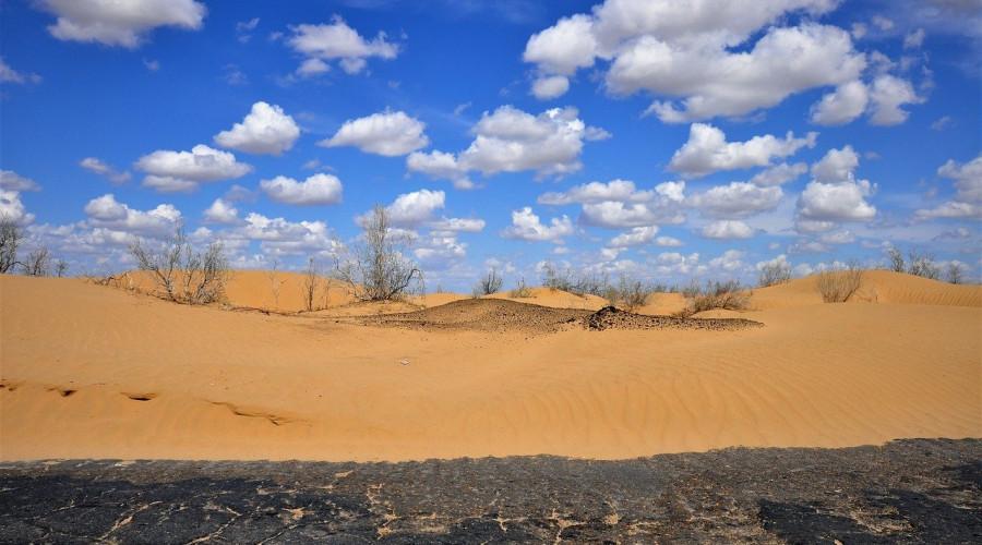 Kyzylkum Desert