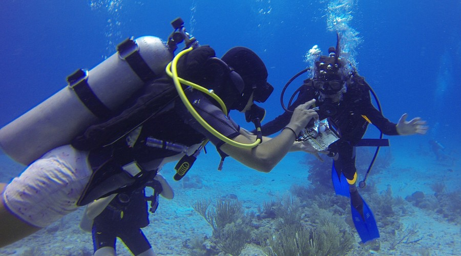 scuba diving at Netrani Island, Karnataka