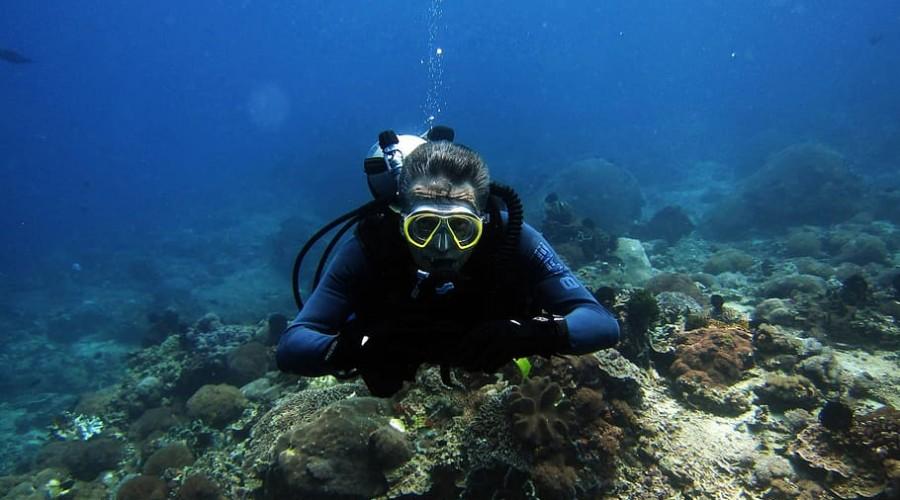 scuba diving at 4 corners, Pondicherry
